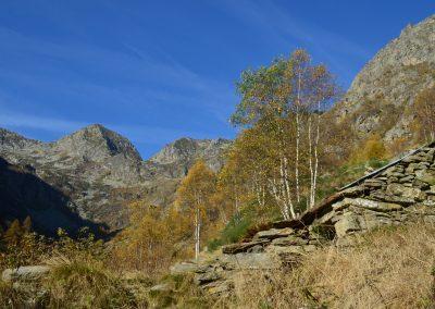 Alpe Casette
